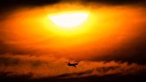 Martinair Cargo PH-MCY image