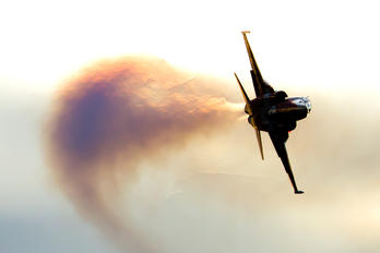 - - Switzerland - Air Force:  Patrouille de Suisse Northrop F-5EM Tiger II