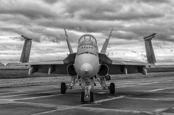 734 - Canada - Air Force McDonnell Douglas CF-188B Hornet