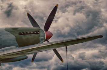 - - Royal Air Force Supermarine Spitfire Mk.VIII