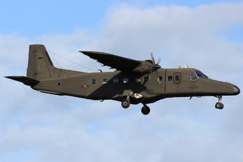 MM62158 - Italy - Army Dornier Do.228