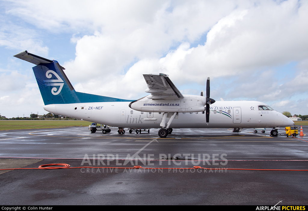 Air New Zealand Link - Air Nelson ZK-NEF aircraft at Whangarei