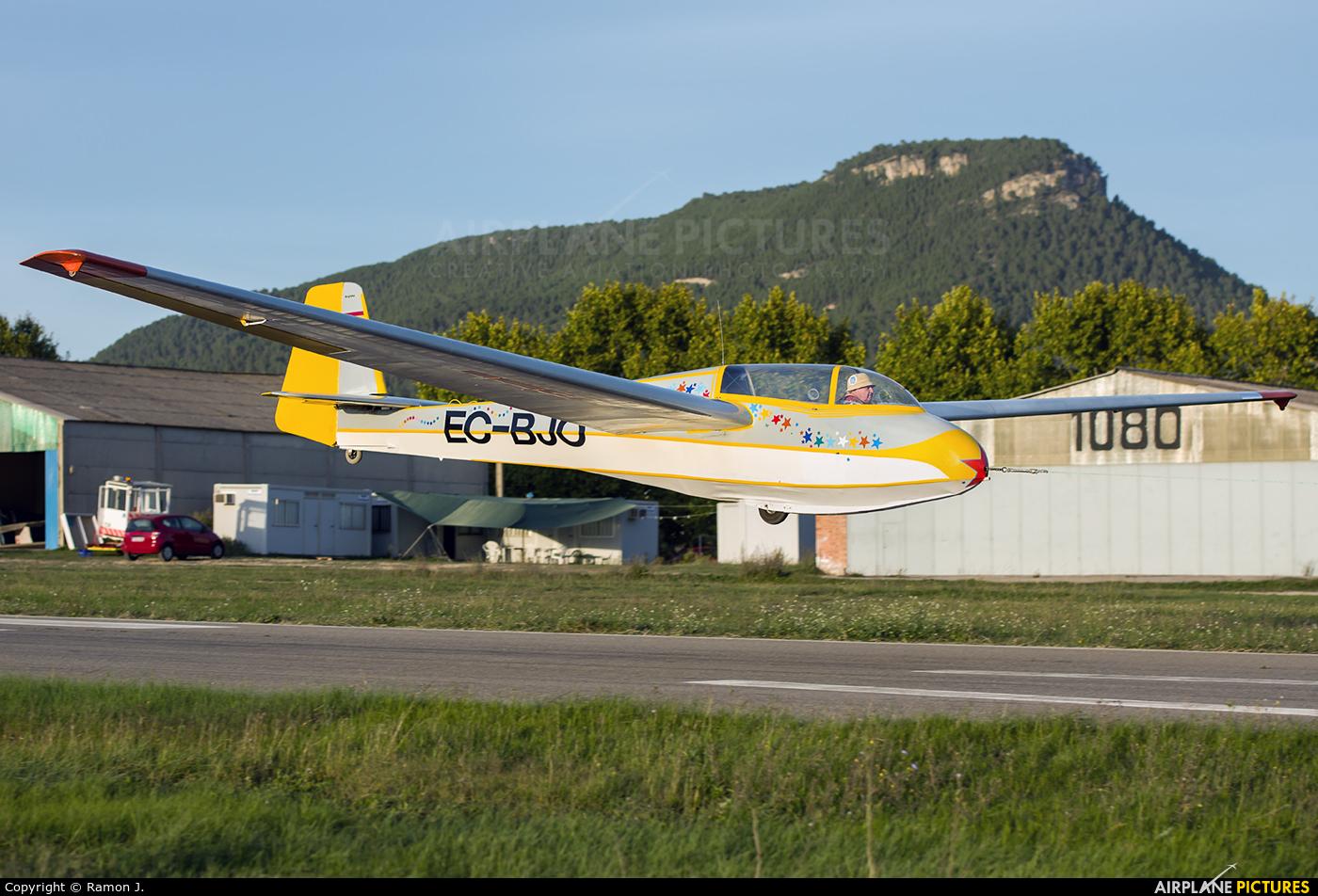 Private EC-BJO aircraft at Igualada - Odena