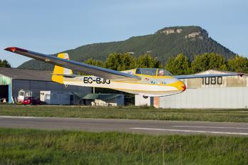 EC-BJO - Private Scheibe-Flugzeugbau Bergfalke III
