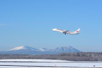 JA331J - JAL - Express Boeing 737-800
