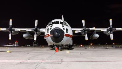 1295 - Egypt - Air Force Lockheed C-130H Hercules