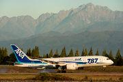 ANA - All Nippon Airways JA821A image