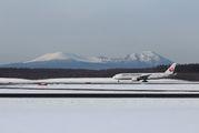 JAL - Japan Airlines JA8978 image
