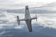 D-FPSI - Private North American P-51D Mustang aircraft