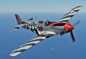 NL44727 - American Airpower Heritage Museum (CAF) North American P-51D Mustang aircraft
