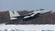 92-8094 - Japan - Air Self Defence Force Mitsubishi F-15DJ aircraft