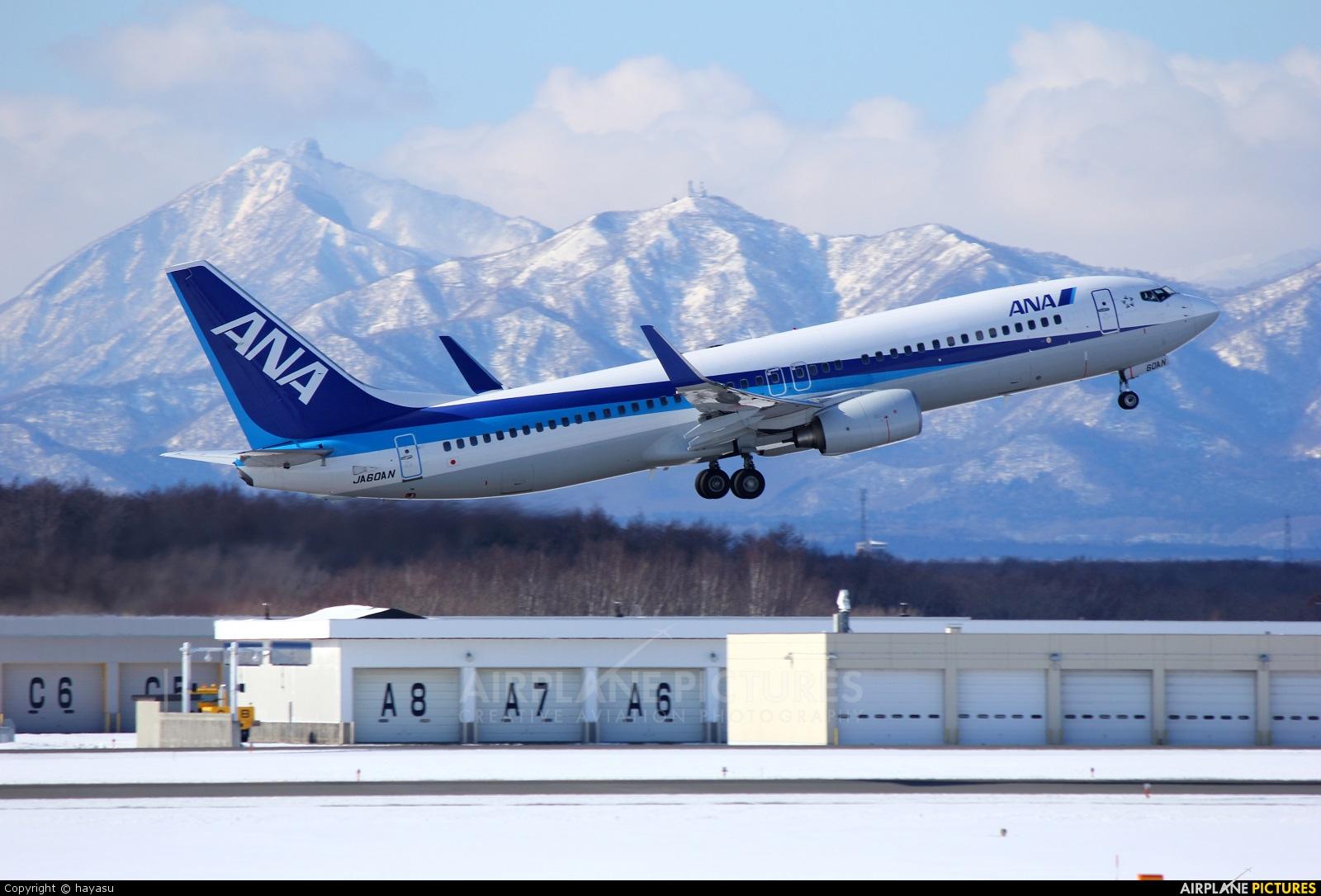 ANA - All Nippon Airways JA06AN aircraft at New Chitose
