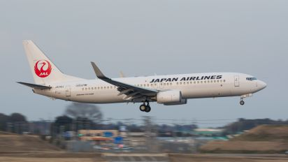 JA312J - JAL - Japan Airlines Boeing 737-800