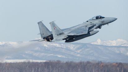 12-8803 - Japan - Air Self Defence Force Mitsubishi F-15DJ