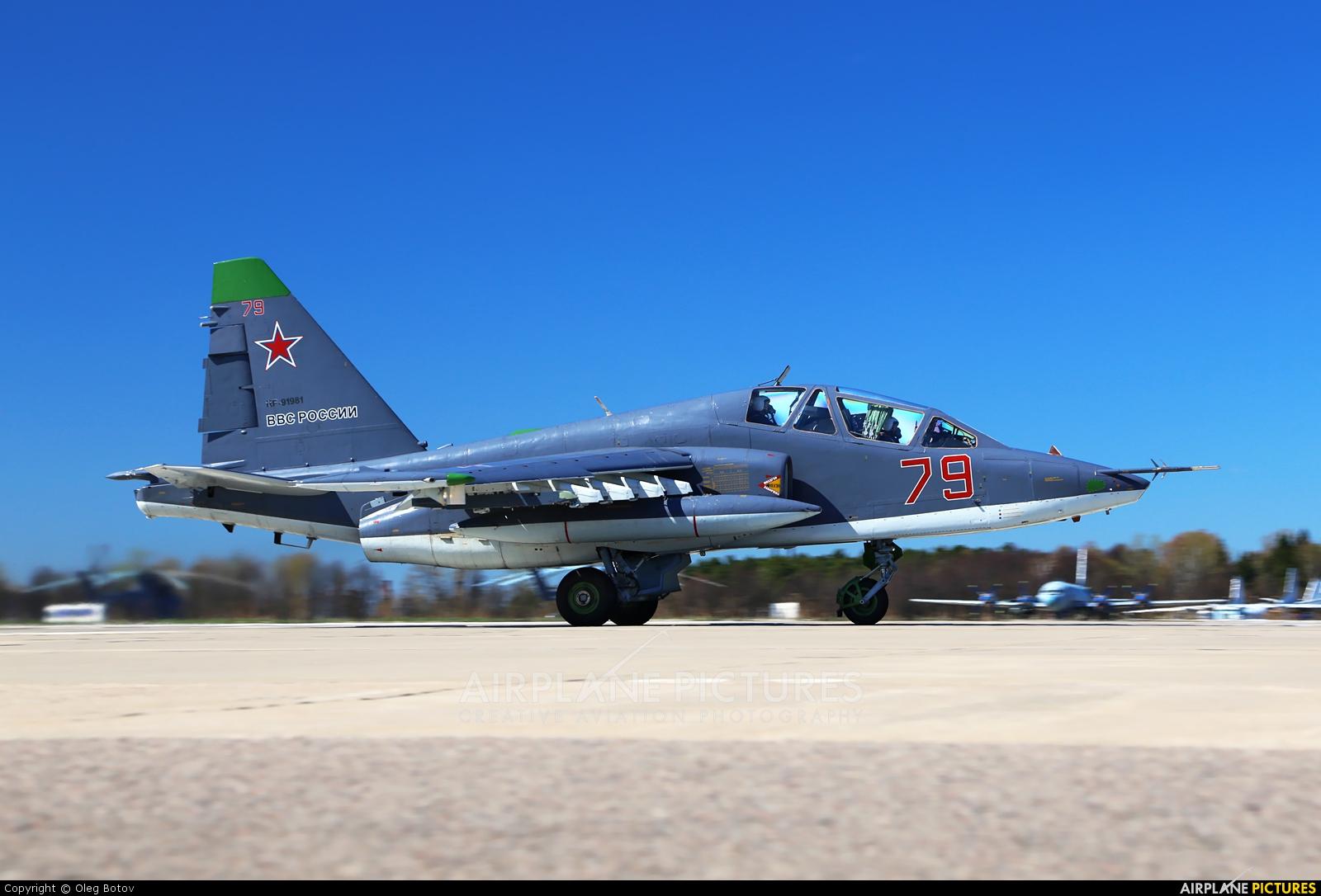 Russia - Air Force 79 aircraft at Kubinka