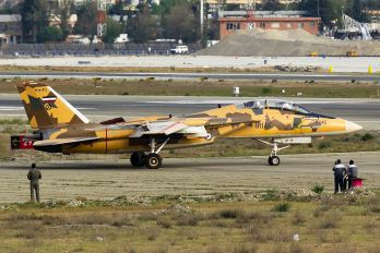 3-6049 - Iran - Islamic Republic Air Force Grumman F-14A Tomcat