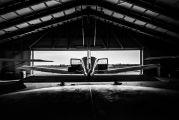 D-EEPP - Private Beechcraft 24 Sierra aircraft