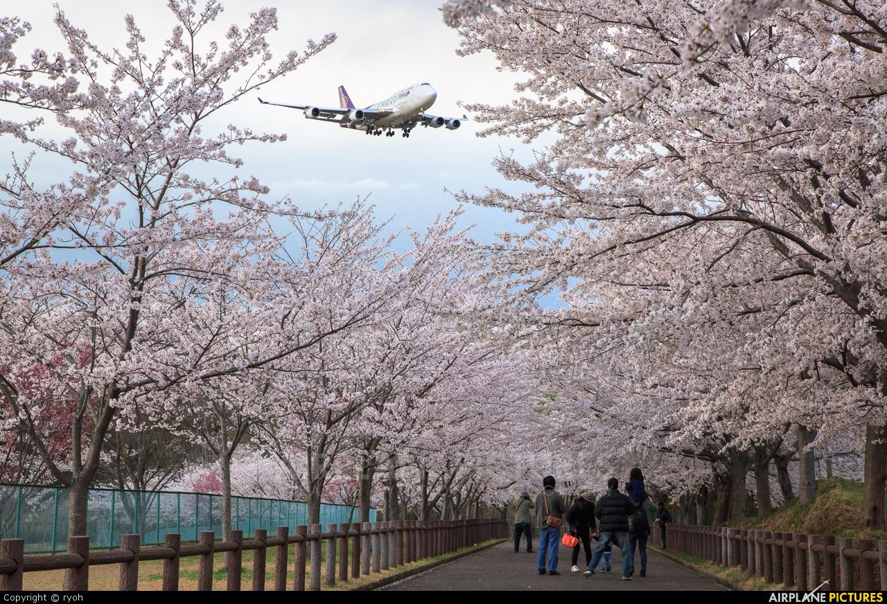 Thai Cargo HS-TGJ aircraft at Tokyo - Narita Intl
