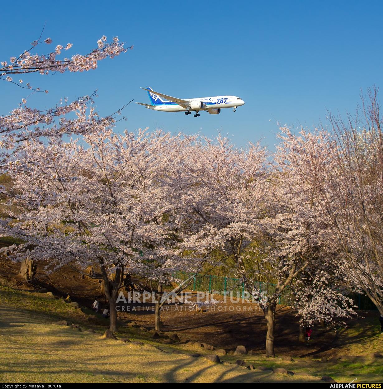 ANA - All Nippon Airways JA810A aircraft at Tokyo - Narita Intl