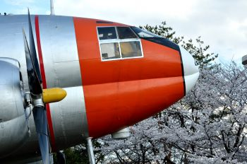 91-1143 - Japan - Air Self Defence Force Curtiss C-46D Commando