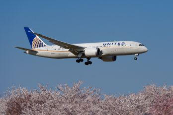 N29907 - United Airlines Boeing 787-8 Dreamliner