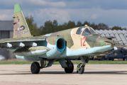12 - Russia - Air Force Sukhoi Su-25SM aircraft