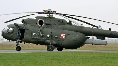 601 - Poland - Army Mil Mi-17