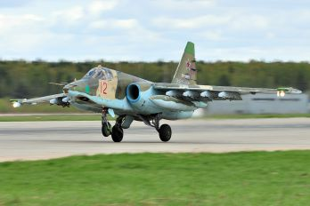 12 - Russia - Air Force Sukhoi Su-25