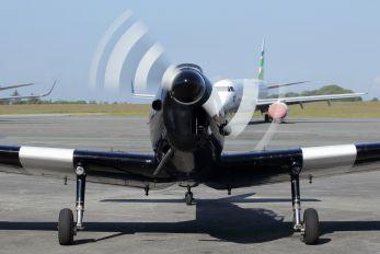 G-APLO - Private de Havilland Canada DHC-1 Chipmunk