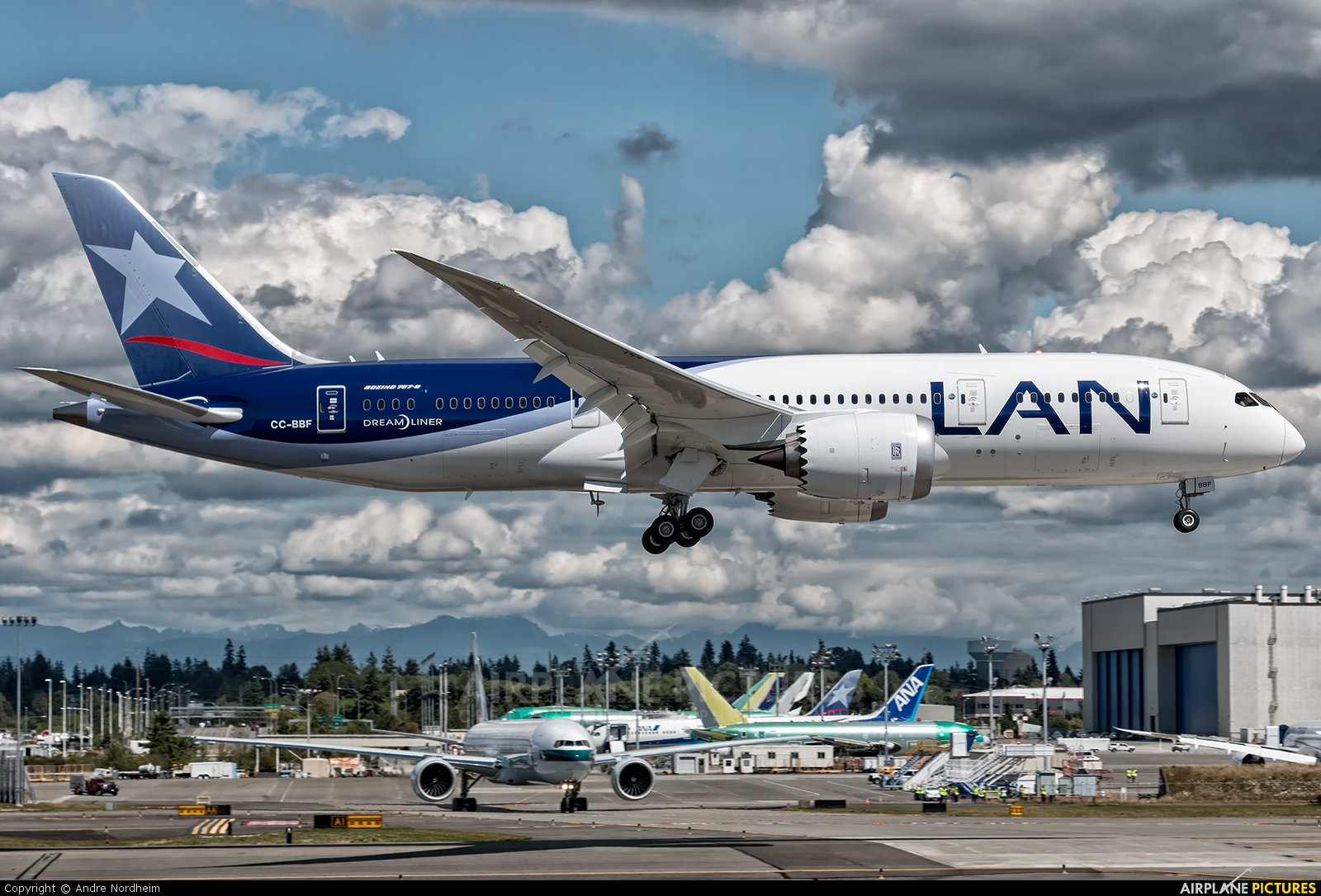 LAN Airlines CC-BBF aircraft at Everett - Snohomish County / Paine Field
