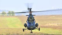 5244 - Poland - Army Mil Mi-2 aircraft