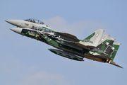 82-8091 - Japan - Air Self Defence Force Mitsubishi F-15DJ aircraft