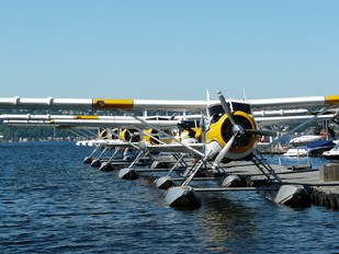 - - Kenmore Air de Havilland Canada DHC-2 Beaver