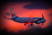 JA306J - JAL - Japan Airlines Boeing 737-800 aircraft