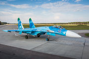 12 - Russia - Air Force Sukhoi Su-27 aircraft