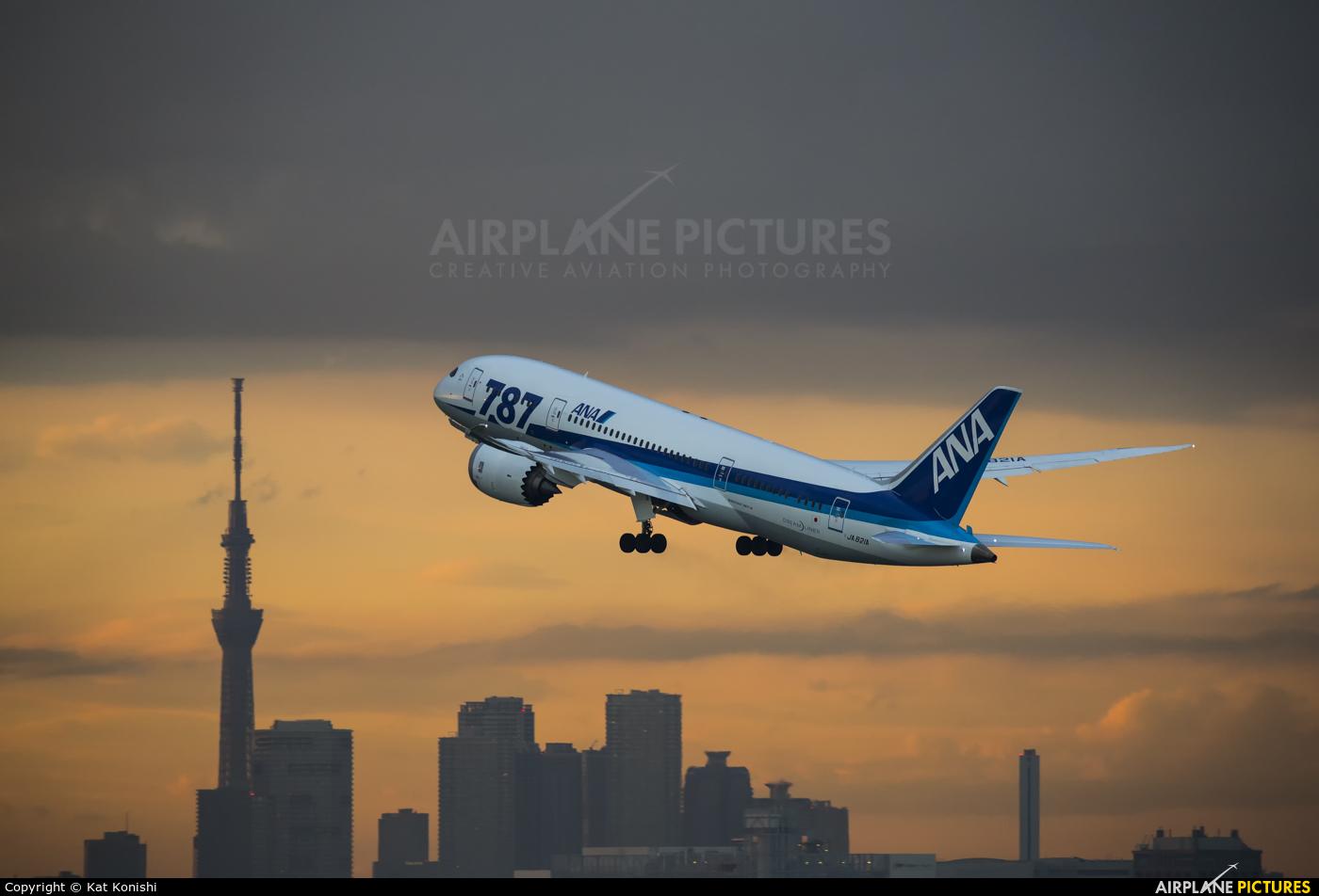 ANA - All Nippon Airways JA821A aircraft at Tokyo - Haneda Intl