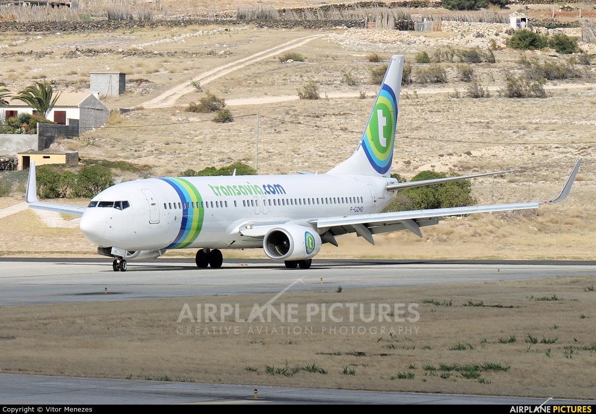 f gzhd transavia france boeing 737 800 at porto santo photo id 431718 airplane. Black Bedroom Furniture Sets. Home Design Ideas