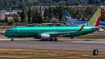 N1796B - Hainan Airlines Boeing 737-800 aircraft
