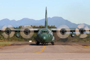 2462 - Brazil - Air Force Lockheed C-130M Hercules