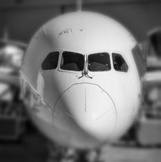 N789ZB - Boeing Company Boeing 787-9 Dreamliner