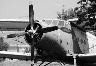 ER-AJM - Air Sirin Antonov An-2