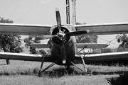Air Sirin ER-AJM image