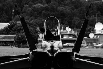 J-5013 - Switzerland - Air Force McDonnell Douglas F/A-18C Hornet