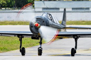 SP-YOC - Smokewings Yakovlev Yak-52