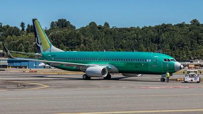 N1786B - Shandong Airlines  Boeing 737-800