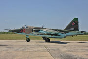 74 - Russia - Air Force Sukhoi Su-25 aircraft