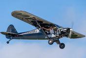 N6777B - Private Piper PA-18 Super Cub aircraft