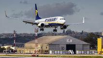 EI-ENZ - Ryanair Boeing 737-800 aircraft