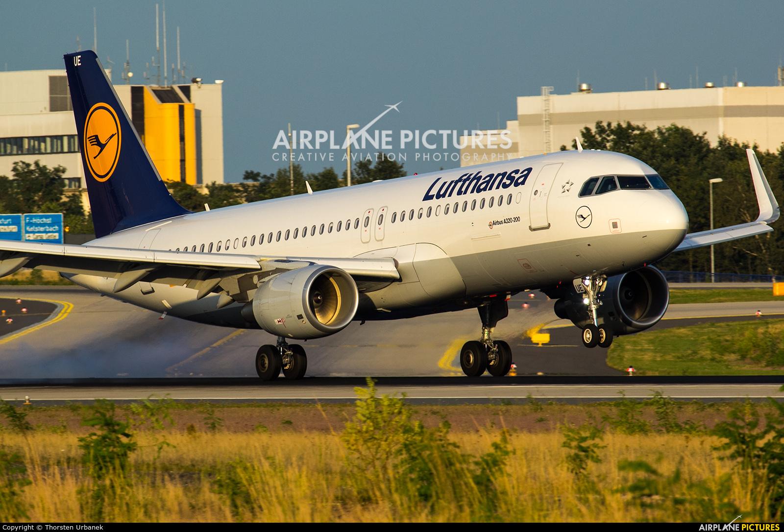 Lufthansa D-AIUE aircraft at Frankfurt