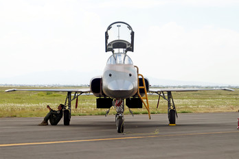4509 - Mexico - Air Force Northrop F-5E Tiger II